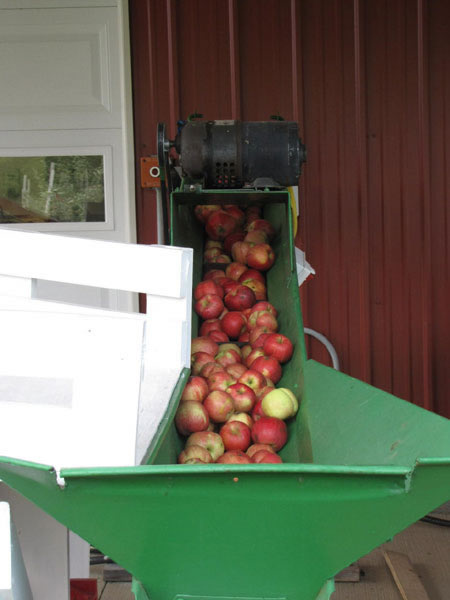 Pictures of the cider making process